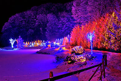 Photograph - Christmas Trees Row And Frozen Lake View by Brch Photography