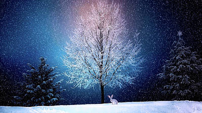 Photograph - Christmas Winter Wonderland by Mountain Dreams