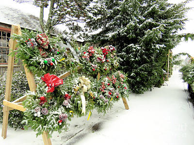 Photograph - Christmas Wreaths by Janice Drew