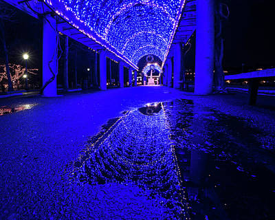 Photograph - Christopher Columbus Trellis Reflection Boston Ma Christmas by Toby McGuire