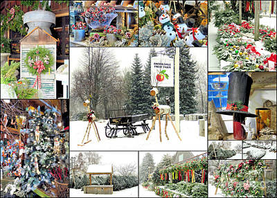 Photograph - Christrmas At Brookdale Fruit Farm by Janice Drew