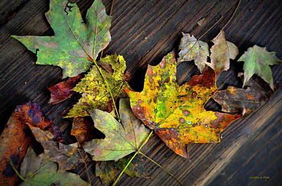 Photograph - Chromatic Finale by Andrea Platt
