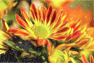 Photograph - Chrysanthemum Into The Sun by Kay Brewer