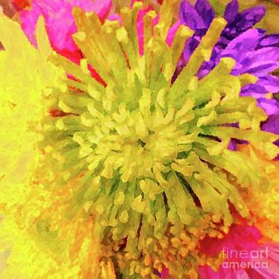 Photograph - Chrysanthemum Fantasia by Barbie Corbett-Newmin