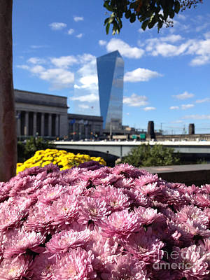 Cira Centre Photograph - Chrysanthemums And Cirrus  by Clay Cofer