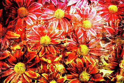 Chrysanthemums In Water 2 Art Print by Skip Nall