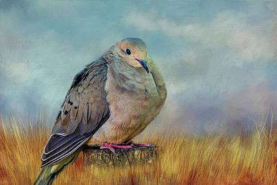 Chubby Dove Art Print