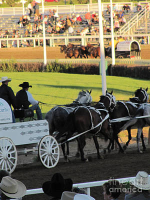 Photograph - Chuckwagon Races by Donna Munro