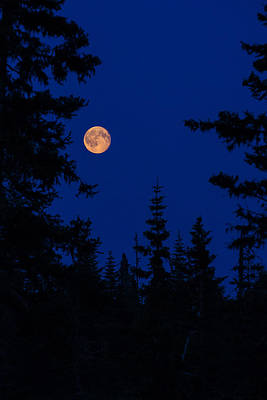 Photograph - Chugach Moon by Sara Hudock