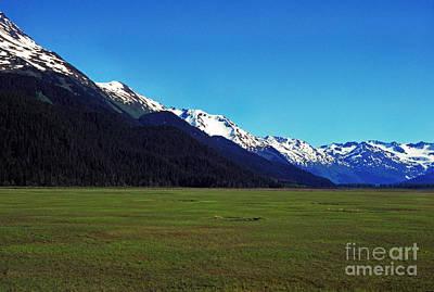 Chugach Mountains Green Plain Art Print
