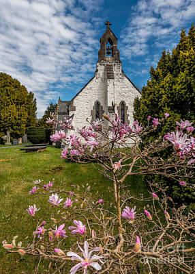 Pink Flower Digital Art - Church Blossom by Adrian Evans