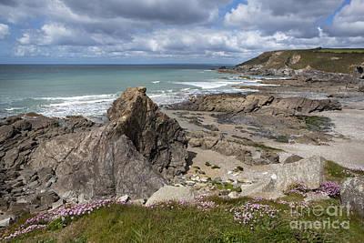 Photograph - Church Cove by Paul Felix
