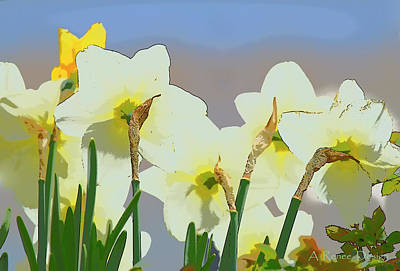 Photograph - Church Daffodils by Renee Marie Martinez