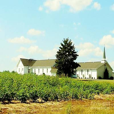 Sunday Photograph - Church In The Cotton Fields by Eloise Schneider