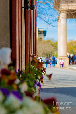 Photograph - Church St. Window Flowers St. Philip's Church Columns In Th Distance by Donnie Whitaker