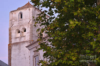 Church Tower And Tree Art Print