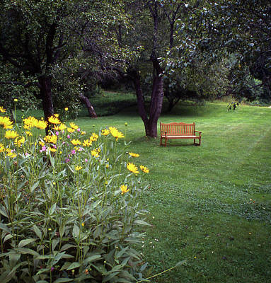 Photograph - Churchyard Bench - Woodstock, Vermont by Samuel M Purvis III