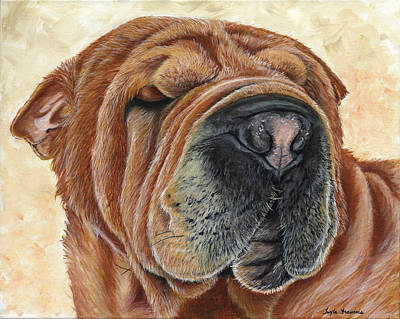 Shar Pei Painting - Cider by Twyla Francois