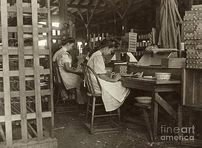 Photograph - Cigar Box Factory 1909 by Granger