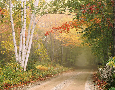Photograph - Cilley Hill Road In Underhill Vermont. by George Robinson