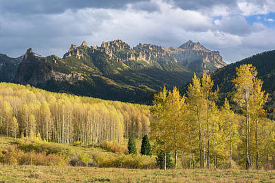 Photograph - Cimarron Gold by Aaron Spong