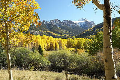 West Fork Photograph - Cimarron Gold by Eric Glaser