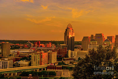 Photograph - Cincinnati Golden by Cathy Donohoue