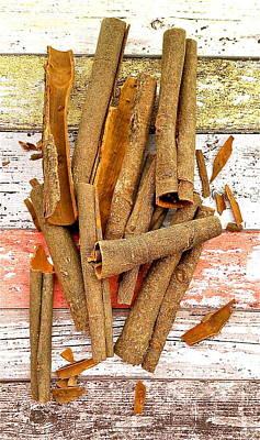 Cinnamon Bark Art Print