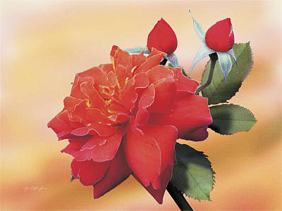 Cinnamon Roses Art Print by Jan Baughman