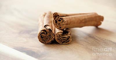 Photograph - Cinnamon Stick by Andrea Anderegg