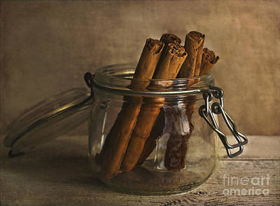 Egypt Photograph - Cinnamon Sticks In A Glass Jar by Elena Nosyreva