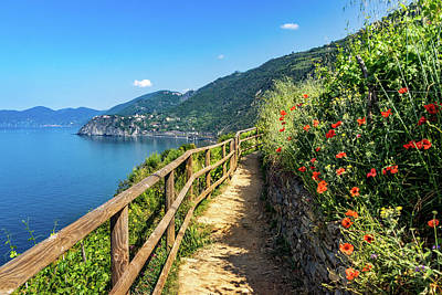 Photograph - Cinque Terre Hiking Trail by Carolyn Derstine