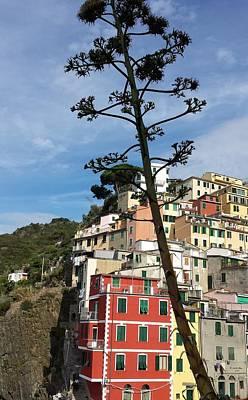 Photograph - Enchanting Cinque Terre, Italy by Judith Rhue