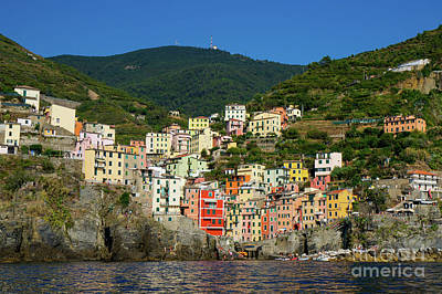 Photograph - Cinque Terre, Italy by Loriannah Hespe