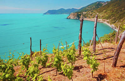 Grape Vines Photograph - Cinque Terre Italy Vineyards by Joan Carroll