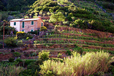 Terracing Photograph - Cinque Terre Italy Vineyards Painterly by Joan Carroll