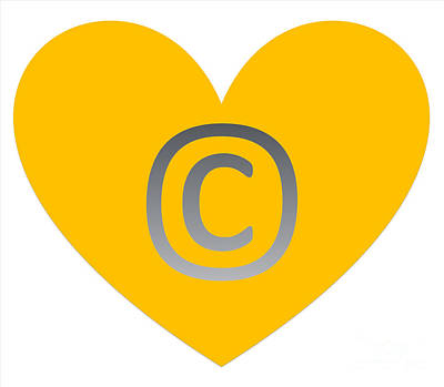 Photograph - Circle C Gold by Catherine Lott