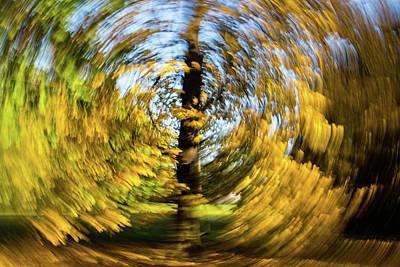 Photograph - Circle by Mache Del Campo