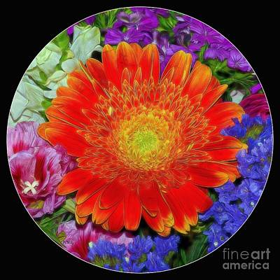 Photograph - Circle Of Color by Patrick Witz
