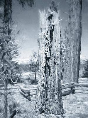 Circle Of Life Tree Trunk Black White Art Print by Mona Stut