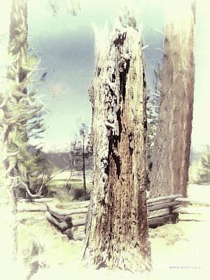 Circle Of Life Vintage Tree Trunk Art Print by Mona Stut