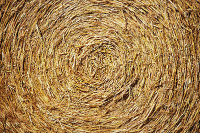 Photograph - Circle Of Straw by Todd Klassy