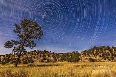 Circumpolar Star Trails Over Mimbres Art Print by Alan Dyer