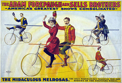 Drawing - Circus, Bicyclists, C1900.  by Granger