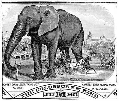 Photograph - Circus Handbill, C1884 by Granger