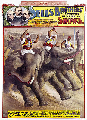 Photograph - Circus Poster, C1890 by Granger