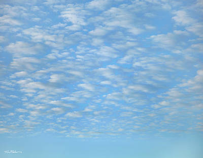 Photograph - Cirrocumulus by Tim Fitzharris