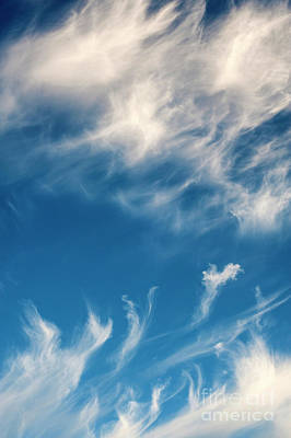 Photograph - Cirrus Fibratus Fair Weather Clouds  by Jim Corwin