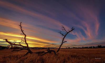 Photograph - Cirrus by Tim Bryan