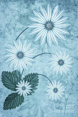 Abstract Flowers Digital Art - Cisco Blue by John Edwards
